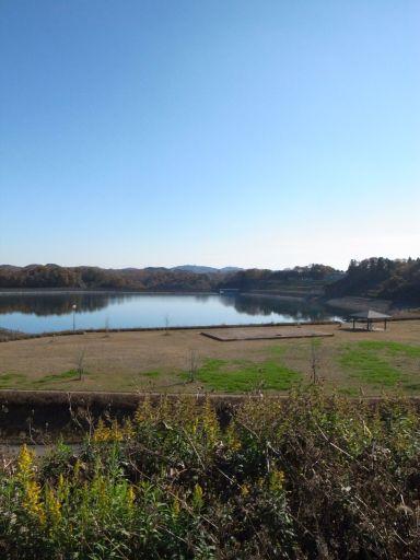 芝ざくら公園(市貝町 見上)