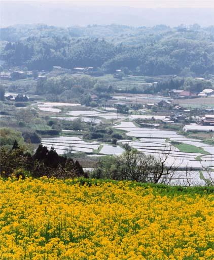 山紫水明(那珂川町 和見)