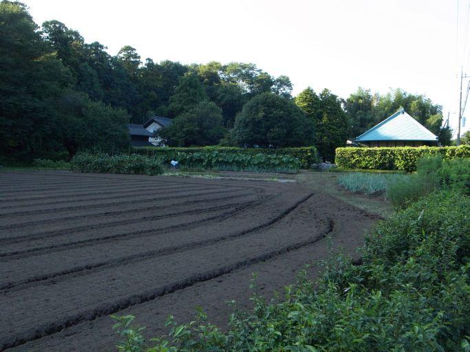筑波山の見える田園風景と機織り(下野市 仁良川)