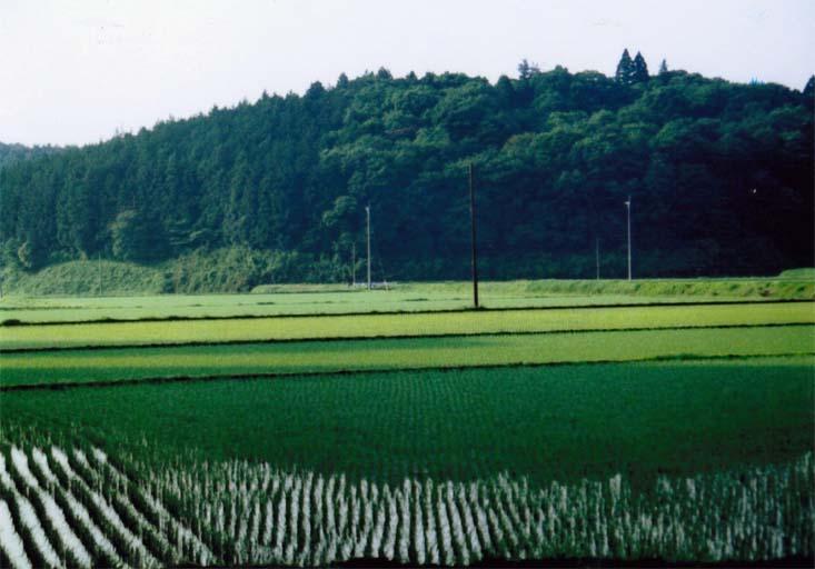 逆面エコ・アグリの里「生きものと農村の共存」 −ランドスケープエコロジー−(宇都宮市 逆面町)