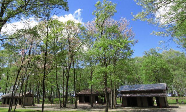 飛山城史跡公園/とびやま歴史体験館