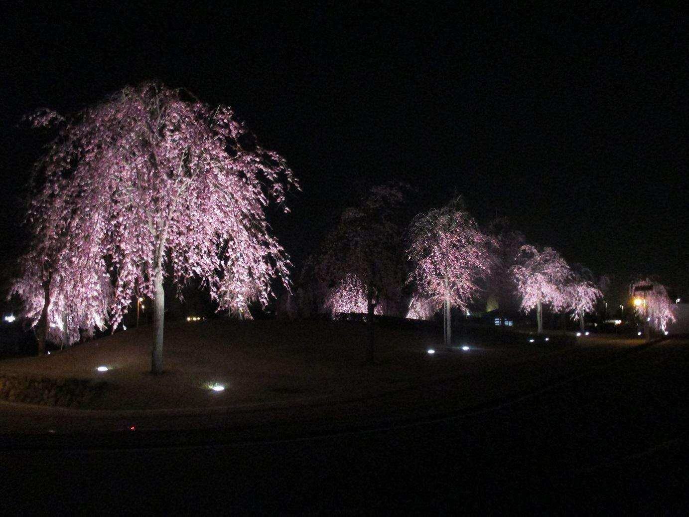 上三川いきいきプラザ