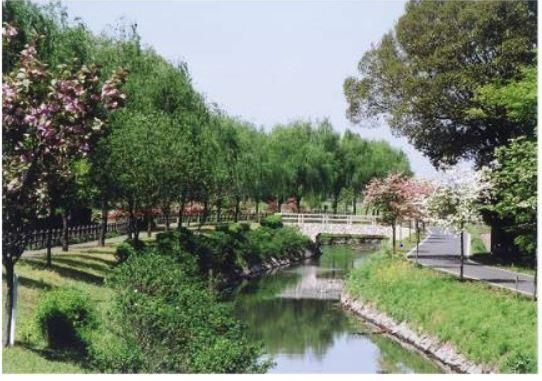 水環境神主公園