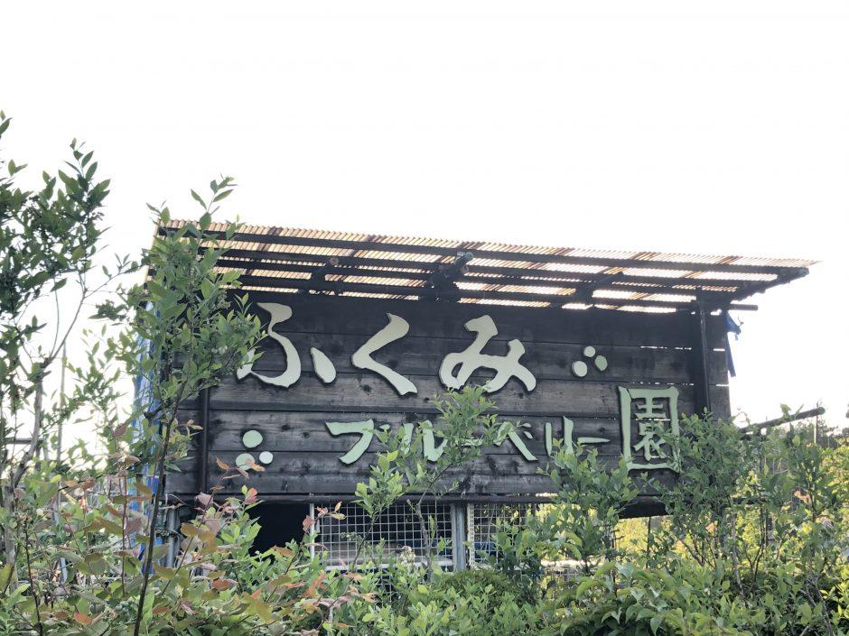風来実(ふくみ)ブルーベリー園