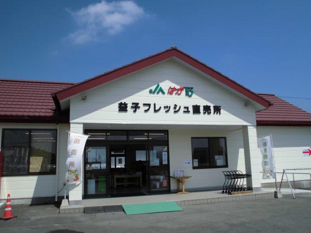 JAはが野 益子観光いちご団地