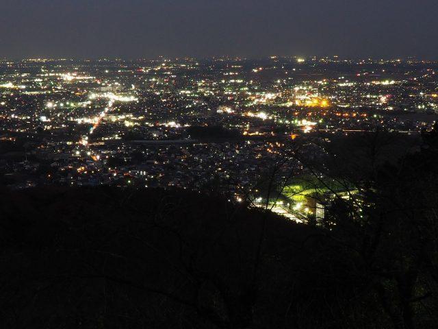 太平山の夜景