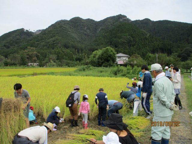 下沢引田農村公園(親子米作り体験)