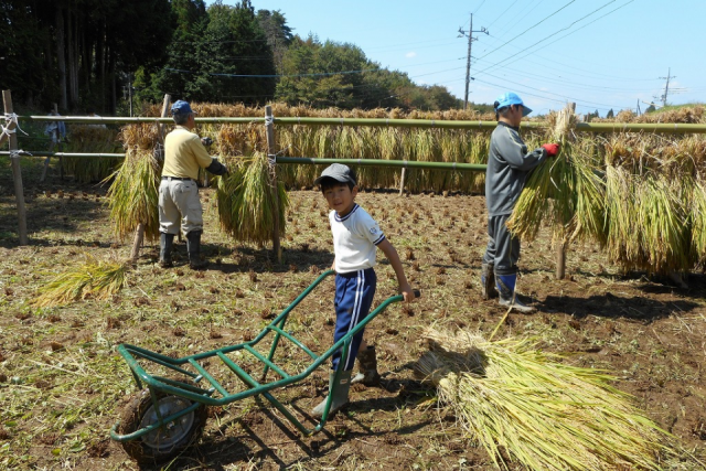 小砂里山農業体験『棚田オーナークラブ』