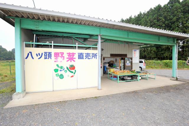 八ツ頭野菜直売所