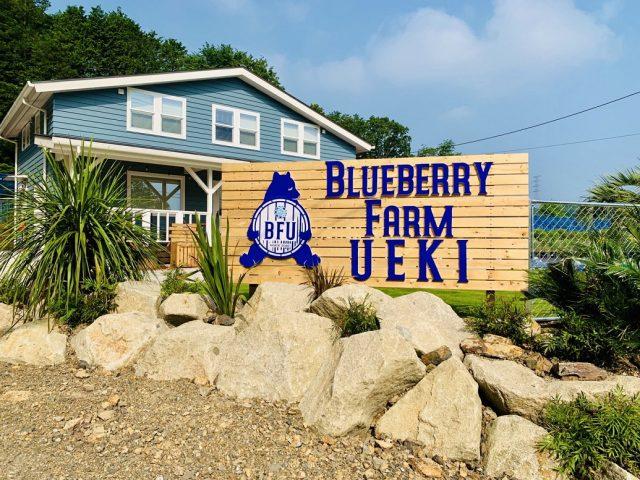BLUEBERRY FARM UEKI (ブルーベリーファームウエキ)