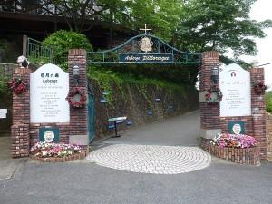 写真 「6月の森」門