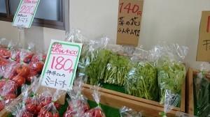 並べられている新鮮野菜
