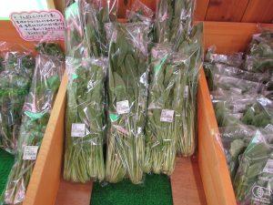 壬生菜商品