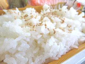 栃木県産コシヒカリ
