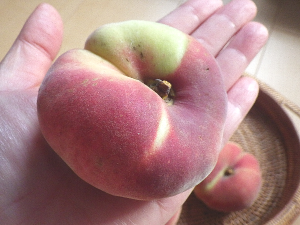 蟠桃の大きさ